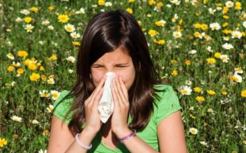 Allergies face aux acariens de plus en plus importantes
