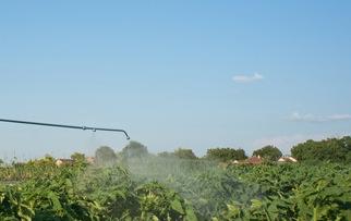 L'écosystème mis en danger par l'utilisation des Pesticides systémiques